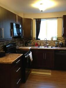 Fully Renovated 2 Bedroom Apt- Available March 1st- Open House London Ontario image 1
