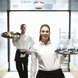 Restaurant bartender, waitress, waiter and delivery driver vacancies available. Full time
