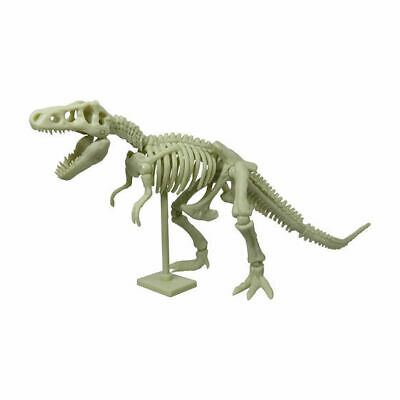 Bandai Tyrannosaurus rex T-rex Dinosaur Skeleton Fossil PVC action figure 20cm A for sale  Shipping to Canada
