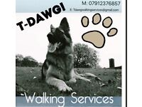Tdawg walking/sitting and other pet services