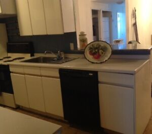 Beautiful, high lacquered white kitchen cabinets wood.