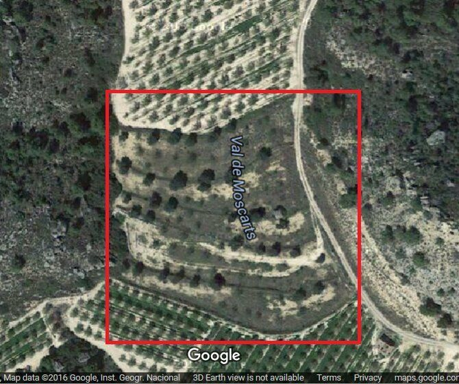 04eac33b09e398 Land For Sale Maella 50710 Spain-3 Acres. Hythe