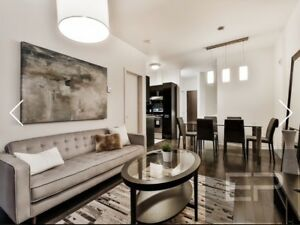 Furnished 1 bedroom apartment for rent, downtown Montreal