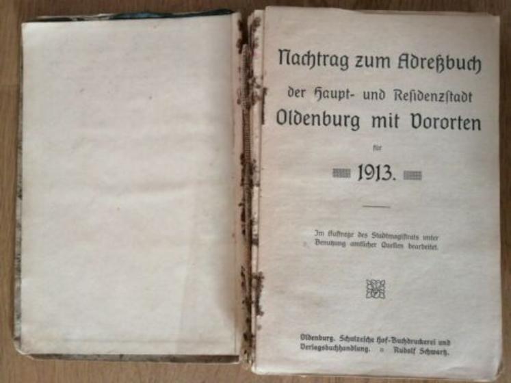 Adressbuch Oldenburg mit Vororten 1913 Einwohner Straßenverzeichnis Genealogie