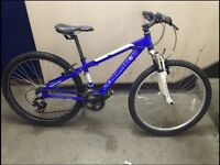Revolution mountain bike