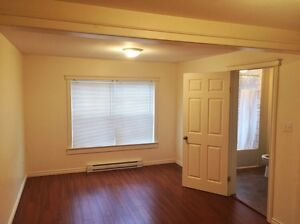 FULLY RENOVATED HOME NEAR MUN/DOWNTOWN FOR LEASE St. John's Newfoundland image 8