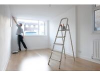 Professional painters for low prices