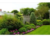 "Green Thumb Gardening & Landscaping ""Quality work with a friendly service"""