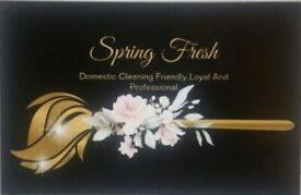 Spring fresh domestic cleaning
