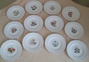 Set of Spode Collector Plates