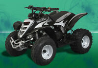 VIPER E-TON 90 - THE BEST YOUTH ATV