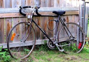 REDUCED-Free Spirit 12-speed Bicycle