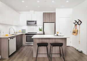 2 Bed Home Pet-Friendly, On SkyTrain with Great Amenities
