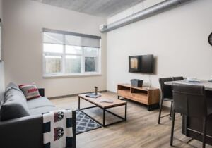 Summer sublet (399/month) beautiful new apartment