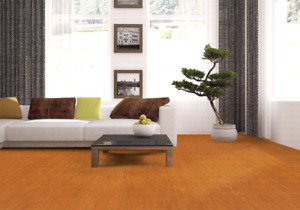 Looking to Save on Cork flooring