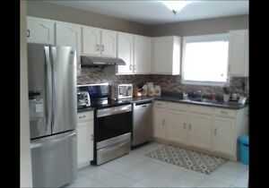 SOUTH WINDSOR - 4 BED, 2 BATH, RENOVATED THROUGHOUT! Windsor Region Ontario image 2