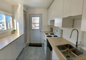 NEWLY RENOVATED 2 Bedroom- Dog Friendly- All Utilities Included