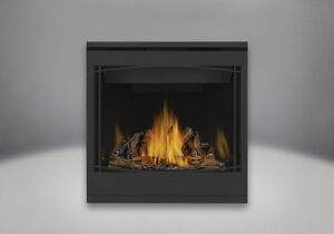 Napoleon GX36 Propane Fireplace - NEW