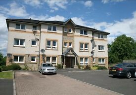 1 bed flat for sale newmains wishaw