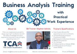 Business Analysis Training with Practical Work Experience