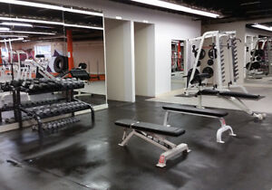 Attention Personal Trainers - Fully Equipped Space for Rent Kitchener / Waterloo Kitchener Area image 3