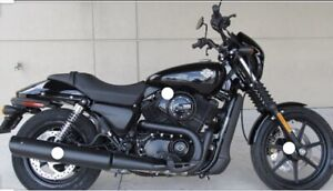 Wanted: Harley Davidson Street 500