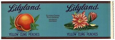 Lilyland Brand  Vintage  Peaches  Lily   An Original 1930S Tin Can Label   902