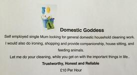 Household cleaning?