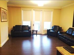 New 1 Bedroom Condo for Lease in Quiet Building