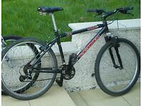 Kona lanai mountain bike.