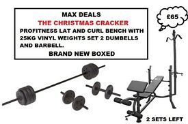 🎄PROFITNESS LAT AND CURL BENCH 25KG VINYL WEIGHTS 2 DUMBELLS BARBELL BNB🎄