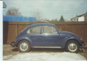 1969 vw project  beetle