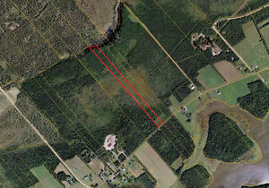 OVER 10 ACRES ON MURDOCK RD