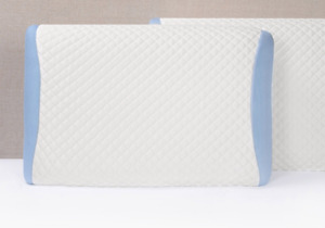 Brand New Polar Tropic Pillow