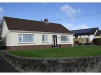 Shared house within easy reach of Lampeter