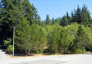 Gold River B.C. Large House Lot for Sale $69,900 Campbell River Comox Valley Area image 4