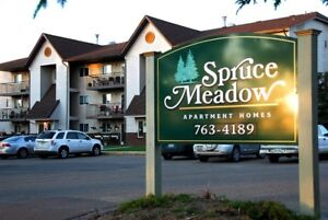 2 Bedroom  with Washer & Dryer close to SIAST/ Call 306 314-0155