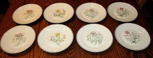 "Richard Ginori Primavera Italy Salad Dessert 8"" Plates Set of 8"