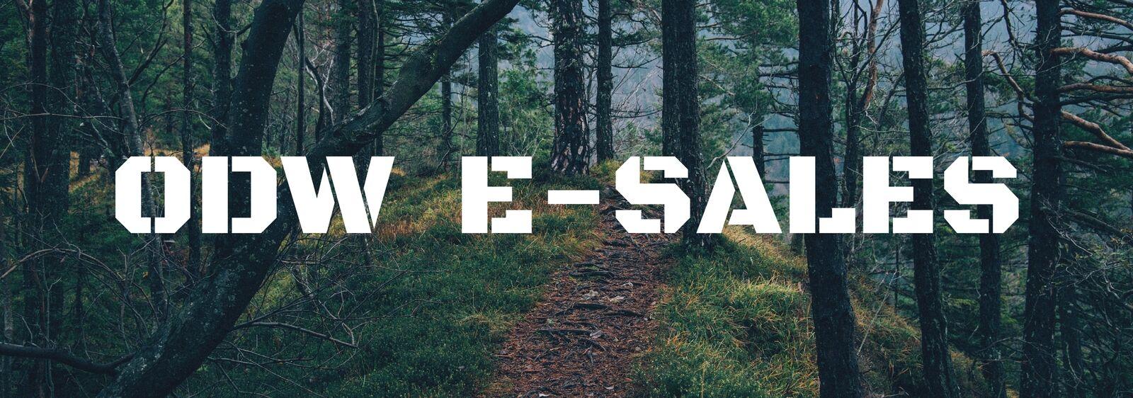 odw e-sales