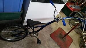 Trail a bike giraffe bleu
