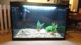 Black glass painted Tropical Fish Tank Aquarium