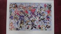1993-N.H.L.HOCKEY HEROES-LIMITED EDITION LITHO-BY BRAD J.HALEY .