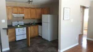 1 br in Millidgeville, starting at $725 H&H incl! AUGUST