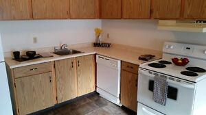 Sun Drenched 1Bdrm- Pet Friendly - Huge Patio! Only $899!