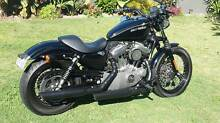Harley Davidson Nightster Eden Hill Bassendean Area Preview