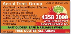 FREE Quotes Tree Services Trim Remove Grind Block Clearing EWP Climber Lake Munmorah Wyong Area Preview