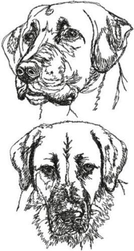 Anatolian Shepherd Dog Breed Personalize Embroidered Fleece Stadium Blanket Gift