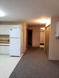 Wanted mature, non smoking renters - 2 bedroom bsmt suite