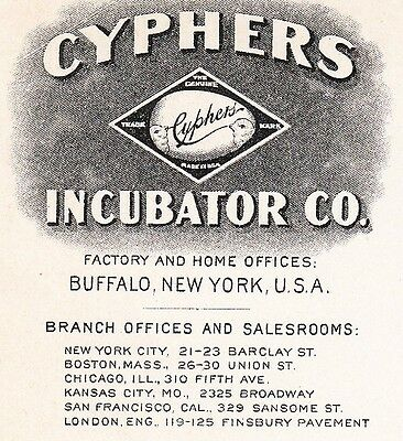 Cyphers Incubator Co Fowl Buffalo NY 1906 Cover C. Hurd Davison Michigan 4y