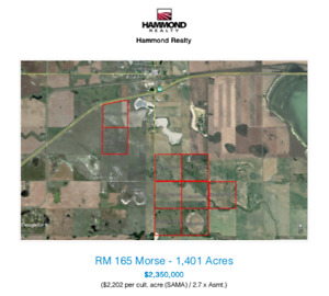 For Sale - RM 165 - 1,401 Acres